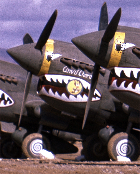 The P-40 fighter